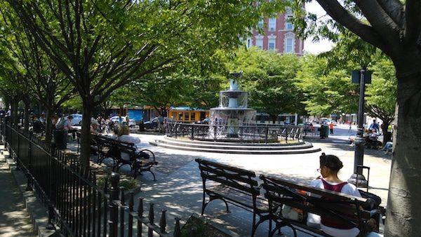 NYC Sunshine